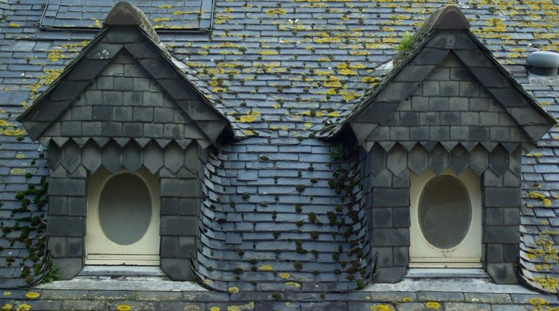amiante sur ma toiture que faire cercll. Black Bedroom Furniture Sets. Home Design Ideas