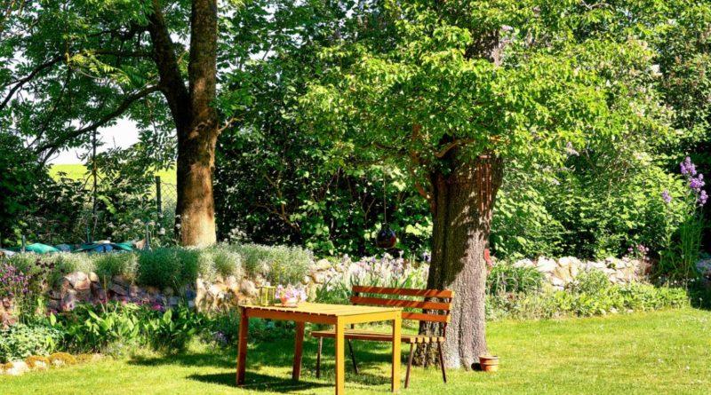 comment donner du relief à son jardin