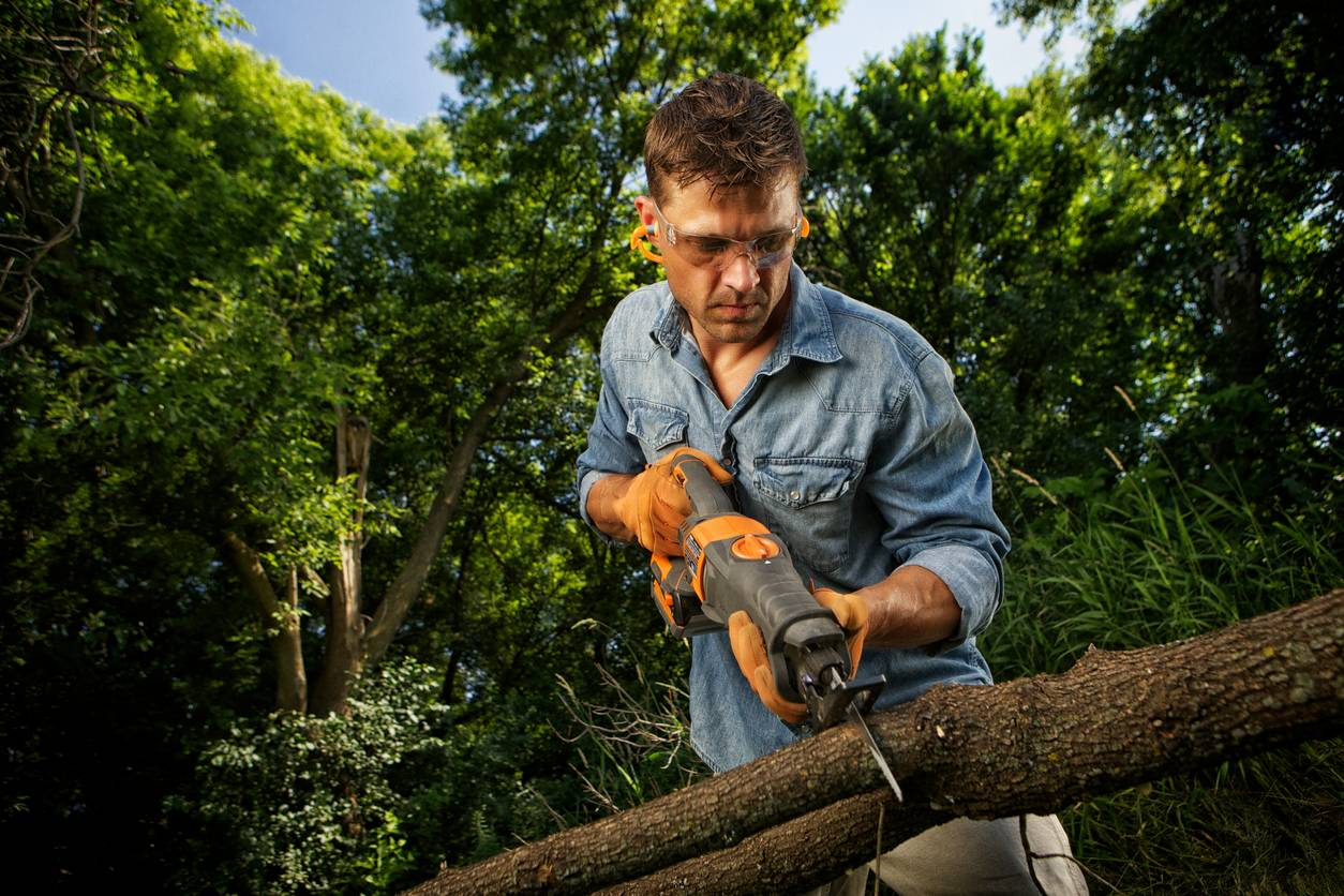 couper arbre malade