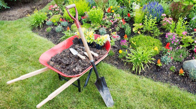préparer jardin vacances été